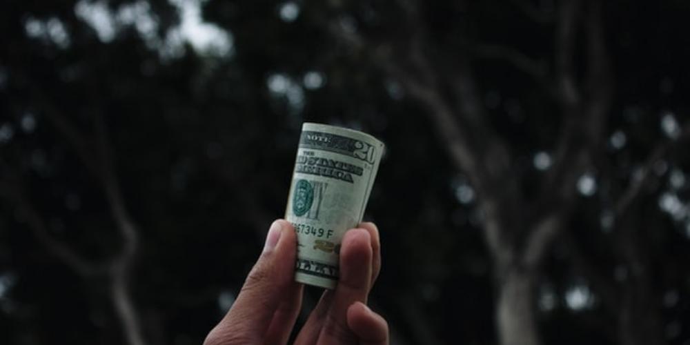 image of hand holding money